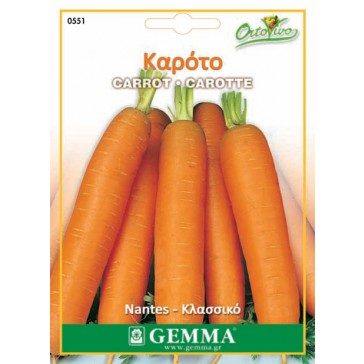 Καρότο, σπόρος