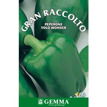 Πιπεριά φλάσκα πράσινη, σπόρος