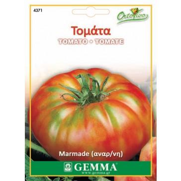 Τομάτα marmade, σπόρος