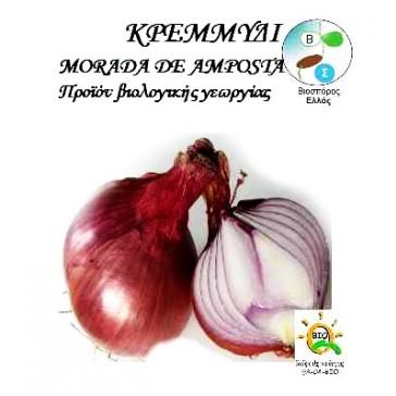 Κρεμμύδι Morada De Amposta, Βιολογικός σπόρος