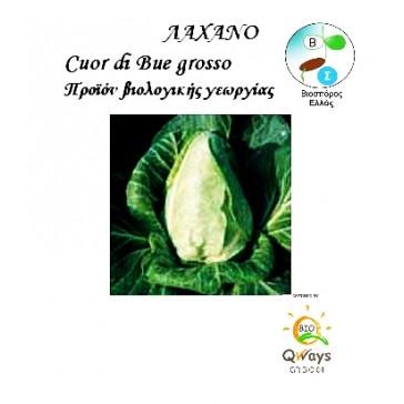 Λάχανο Cuor Di Bue Grosso, Βιολογικός σπόρος