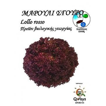 Μαρούλι Σγουρό Lollo Rosso, Βιολογικός σπόρος