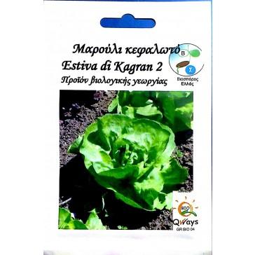 Μαρούλι Κεφαλωτό Καλοκαιρινό Estiva di Kagran, Βιολογικός σπόρος