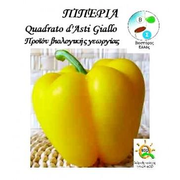 Πιπεριά Quadrato D'asti Giallo, Βιολογικός σπόρος