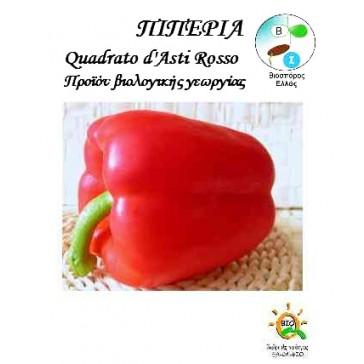 Πιπεριά Quadrato D'asti Rosso, Βιολογικός σπόρος