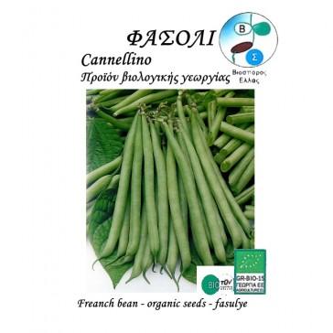 Φασόλι Cannellino (Τσαουλί), βιολογικοί σπόροι