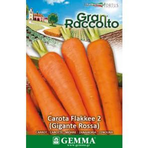 Καρότο Flakkee2, σπόρος