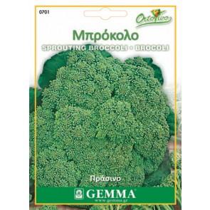 Μπρόκολο πράσινο, σπόρος