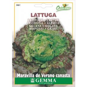 Μαρούλι σαλάτα long live(30 ημ.), σπόρος