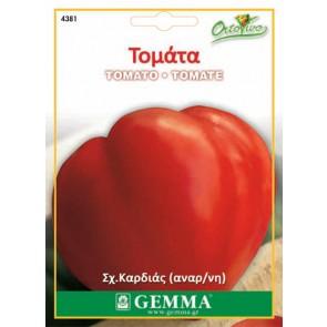 Τομάτα (Καρδιά του βουβαλιού), σπόρος