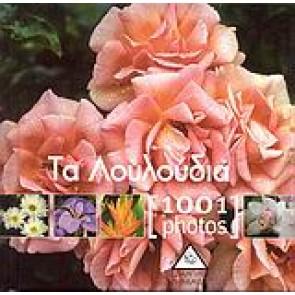 Τα λουλούδια [1001 Photos]