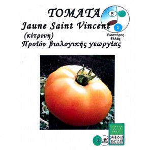 Τομάτα Jeune Saint Vincent, βιολογικοί σπόροι